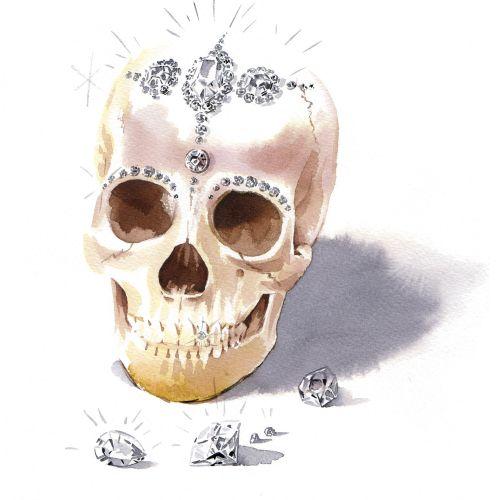 An illustration of skull