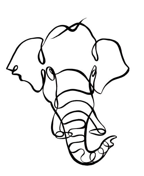 Indian elephant nature ink illustration