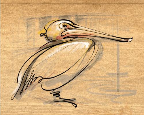 Pencil art of duck