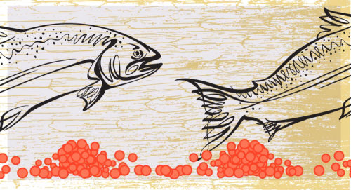 Drawing of fishes in the sea