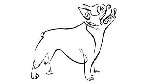 快乐的狗的动画的动作线条画