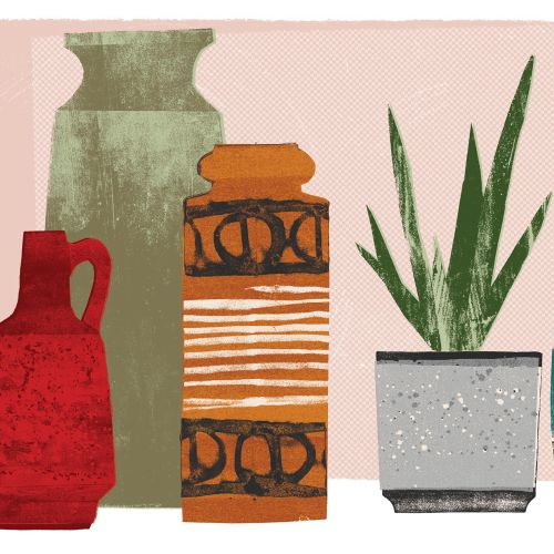Hand drawn of vases with aloe vera