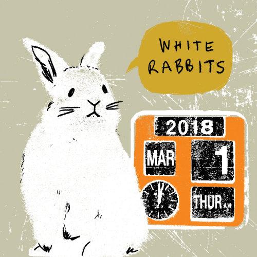 Ilustración animal de conejo blanco