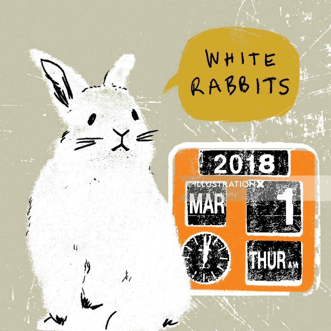 Animal illustration of white rabbit