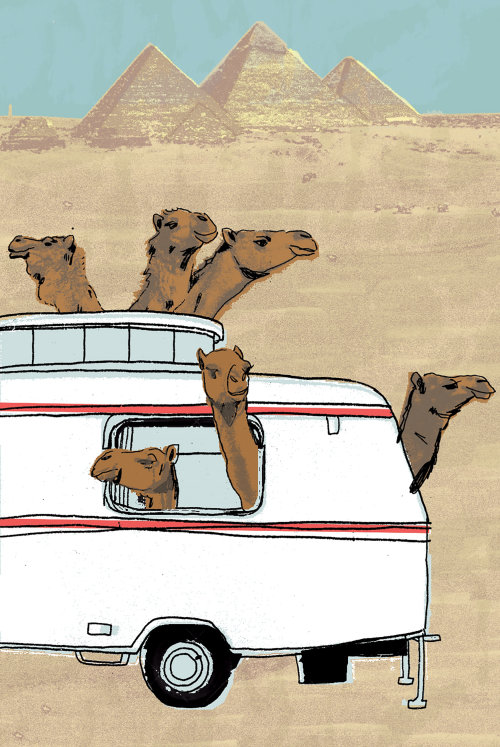 Animal Camels in truck painting