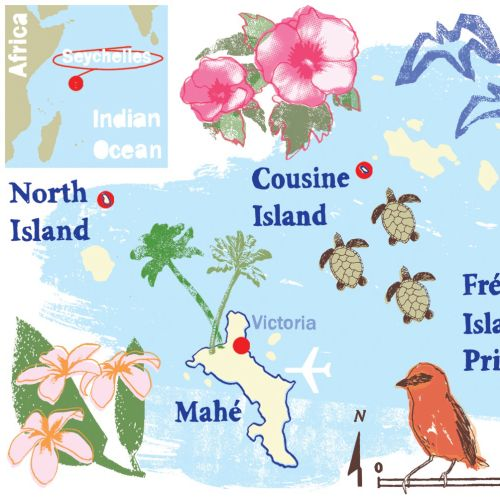 Seychelles Map Mixed media