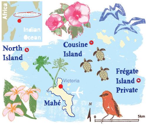 Mapa de Seychelles Técnica mixta