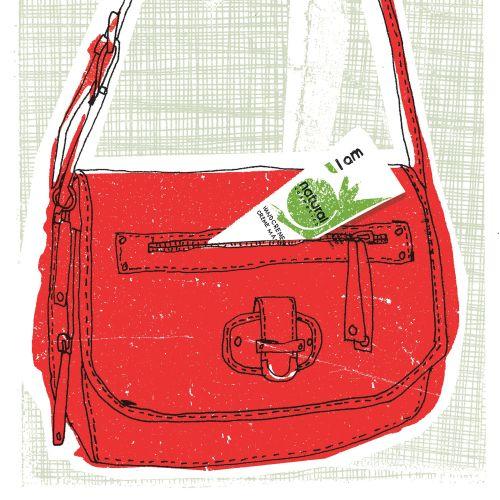 Handbag illustration