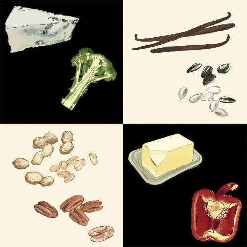 Ilustración de alimentos ingredientes