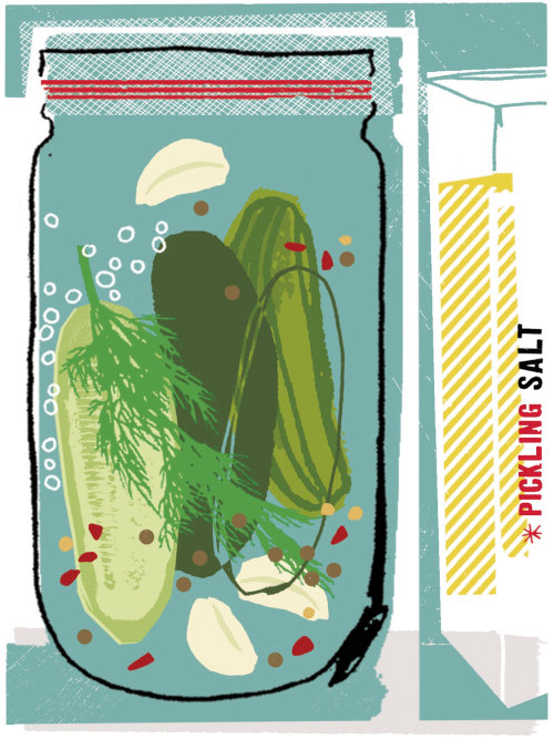 Food and Drink Mixed media Pickles