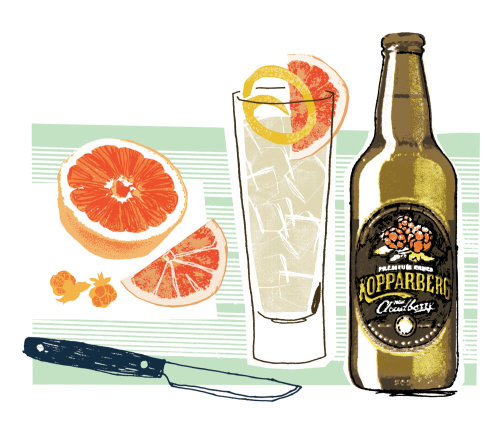 Kopparberg Cider illustration