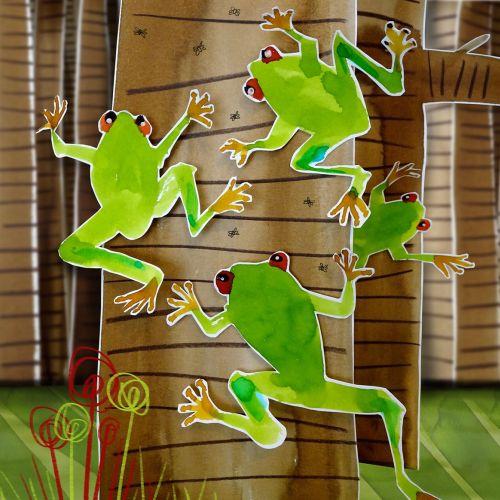 Animals frog climbing up the tree