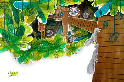 动物猴子和松鼠