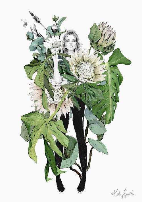 Ilustração botânica por Kelly Smith