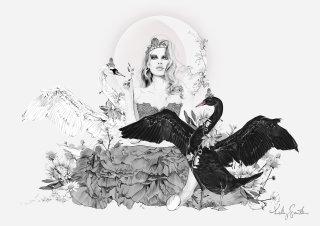 Kelly smith's The Swan Princess