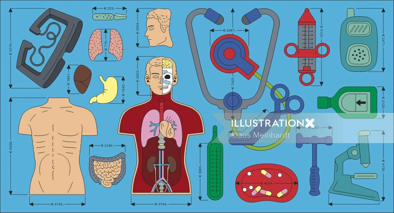 Human parts illustration by Klaus Meinhardt