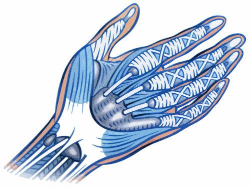 Ilustración de mano robótica por Klaus Meinhardt