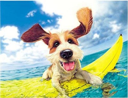 Pintura digital de cachorro surfando