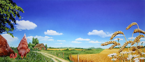 Beautiful landscape with chicken