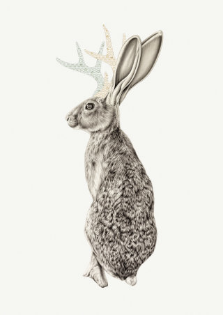Realist painting  of Jackalope