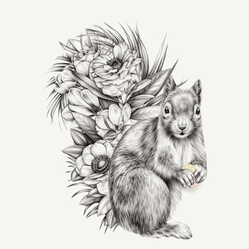 Pencil drawing of Squirrel in flowers