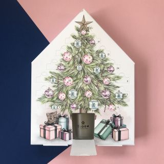 advent packaging for Superdrug's Bloom
