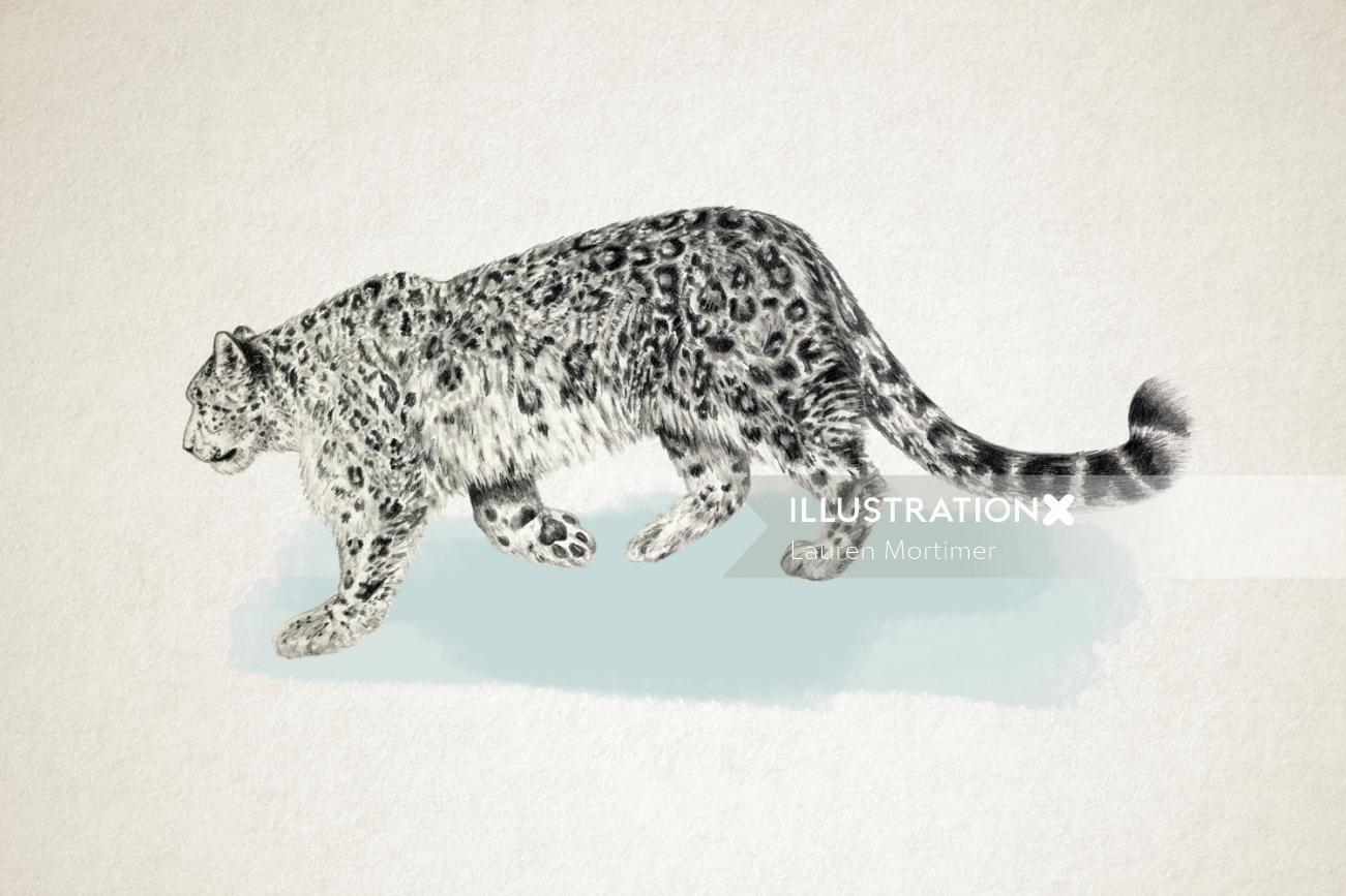 Leopard walking in the snow