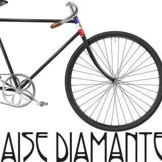 Illustration of France winning bicycle