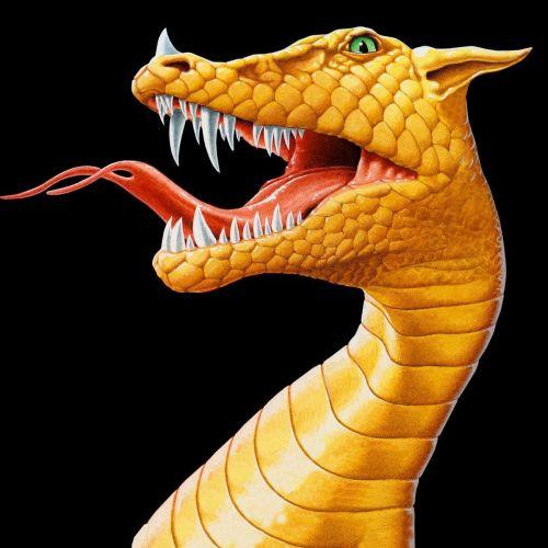 Dragon head 3d art