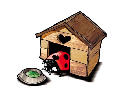 Bug在狗屋里的插图