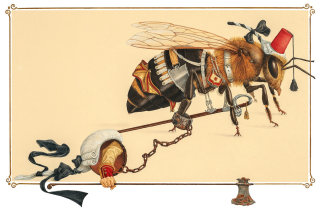 Steampunk Realistic insect machinery illustration