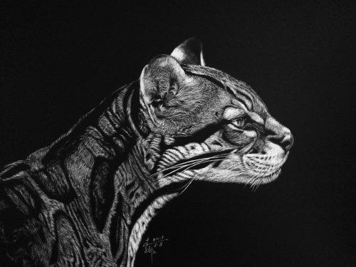 Cheetah portrait illustration