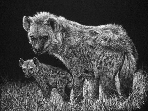 Animal Illustration of Spotted hyena