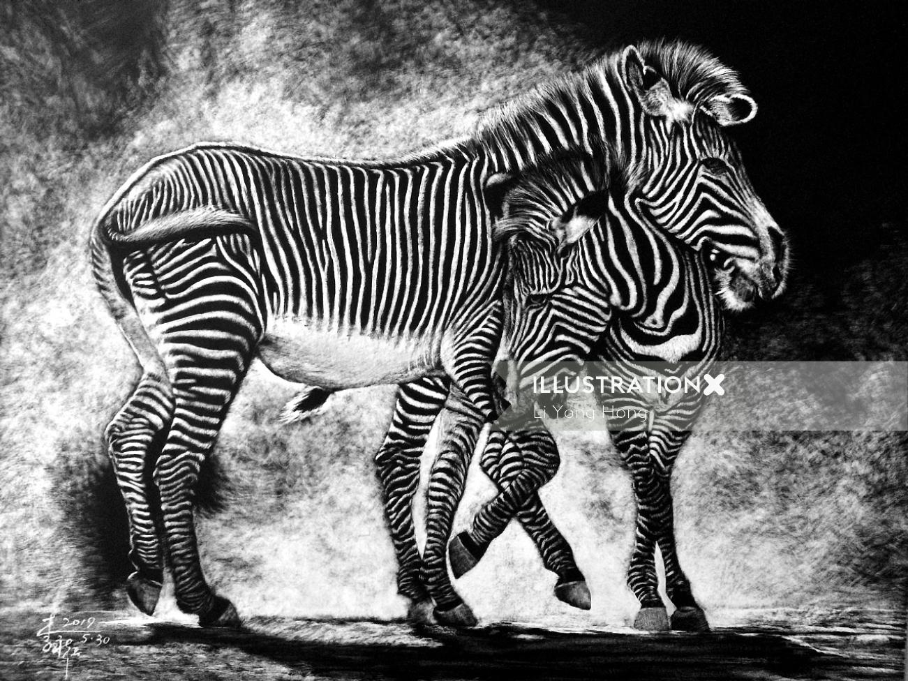 Animal illustration of Zebra