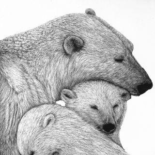 Li Yong Hong - Illustrator from Inner Mongolia