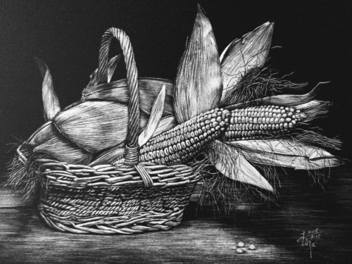 Black and white drawing of corn