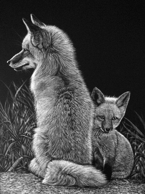 Illustration d'animaux de loup de la toundra d'Alaska