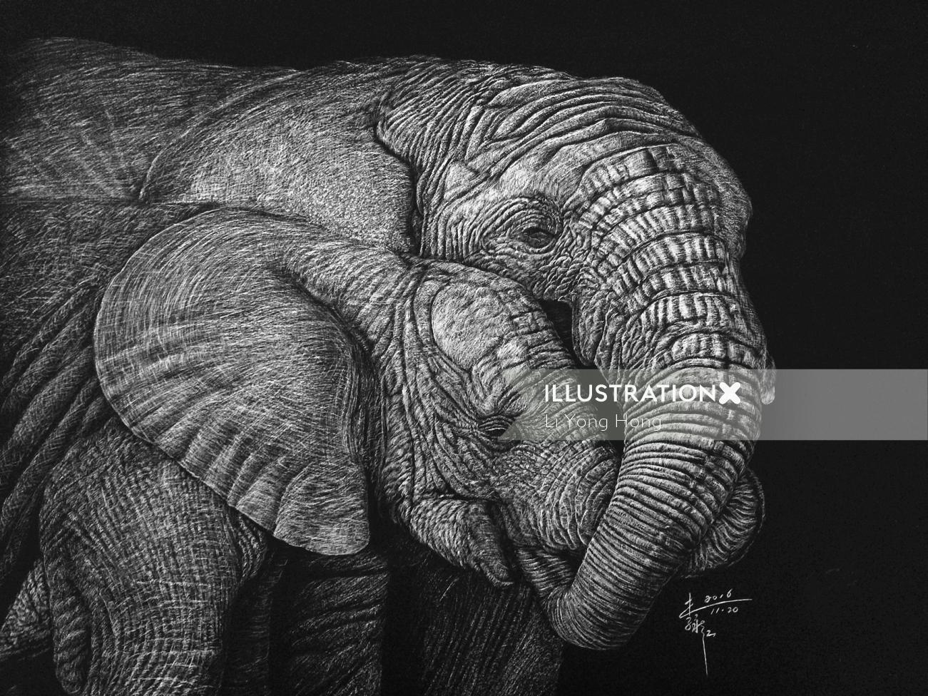 Indian elephant animal illustration