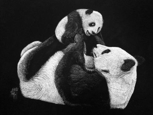 Pandas love black and white illustration