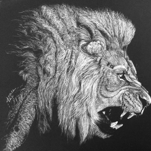 Animal Illustration of roaring lion