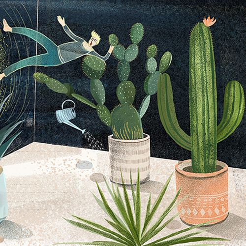 A boy fell into a magic cactus world when watering garden.