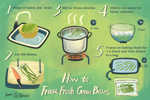 Infographic illustration that tell people how to freeze fresh green beans.