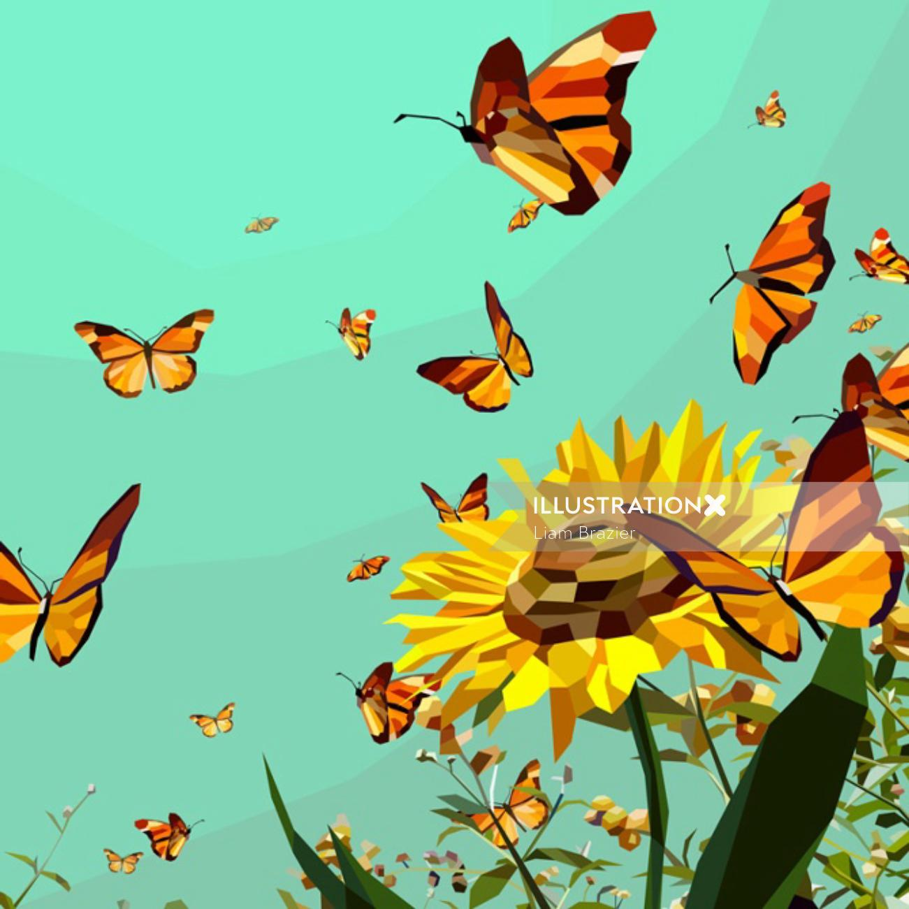 Nature - Colourful butterflies in the sunflower garden