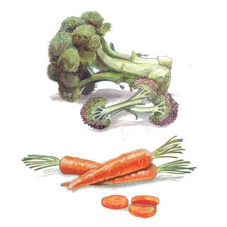 Illustration of Bocolli and Carrots