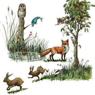 Line, watercolour, Animals, Wildlife, Countryside