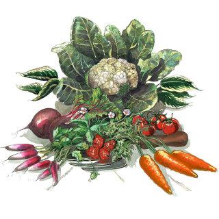 Vegetables watercolor painting