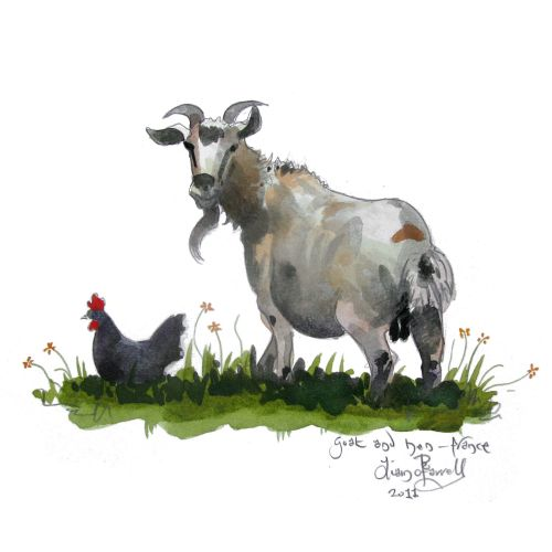 A Goat and chicken painted France