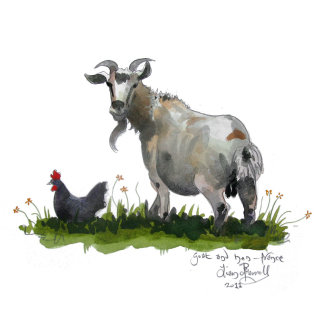 Illustration of Goat and hen