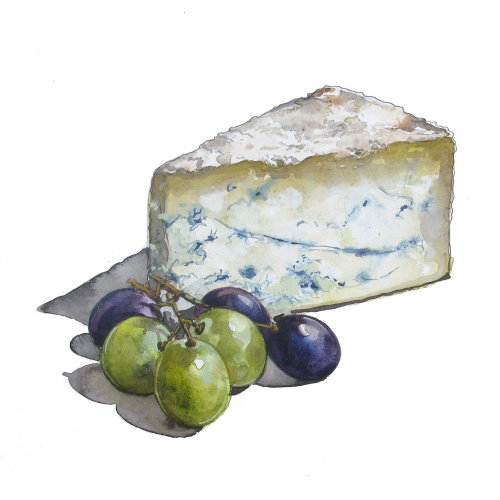 Watercolour of cheese and grapes