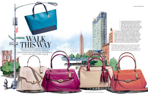 Illustration of ladies hand bags